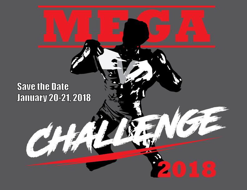 MEGAChallenge2018-d2