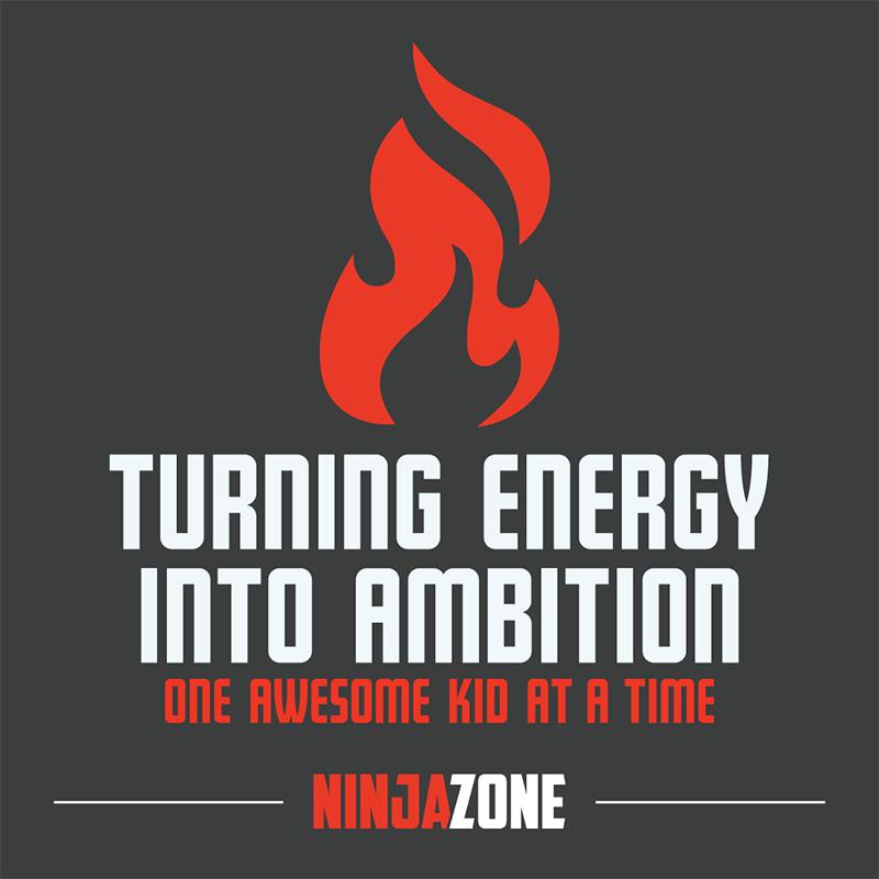 NinjaZone1