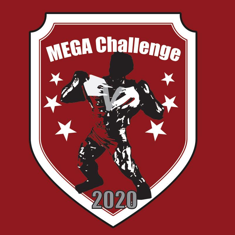 2020MEGAChallenge